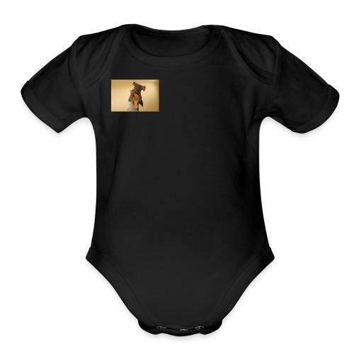 D64472BC 4731 4C32 9763 DE31B2009719 - Organic Short Sleeve Baby Bodysuit