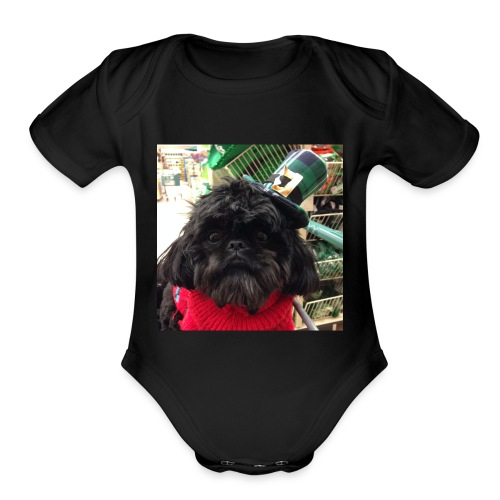 189F88EB 818C 496C AFAC CEDF6224744F - Organic Short Sleeve Baby Bodysuit