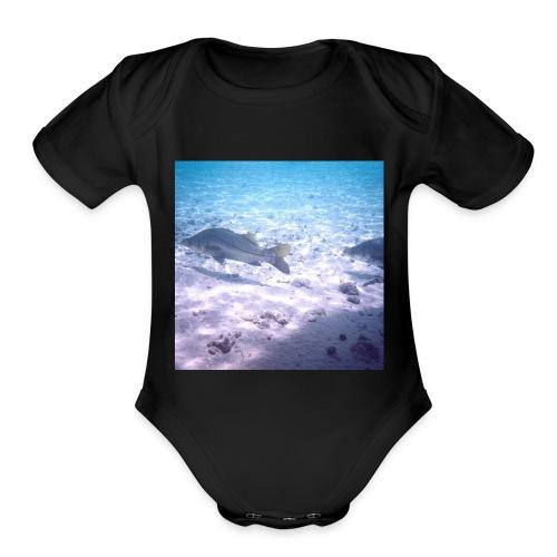 Snook - Organic Short Sleeve Baby Bodysuit