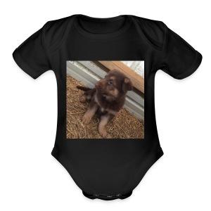 Kimber the dog - Short Sleeve Baby Bodysuit