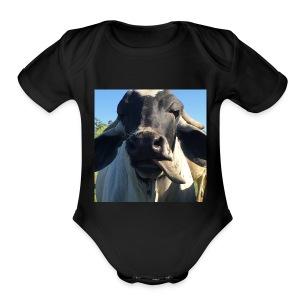 Brahman - Short Sleeve Baby Bodysuit