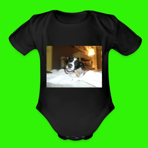 Sportswear (Eating Bone) - Organic Short Sleeve Baby Bodysuit