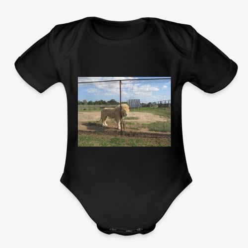IMG 7902 - Organic Short Sleeve Baby Bodysuit