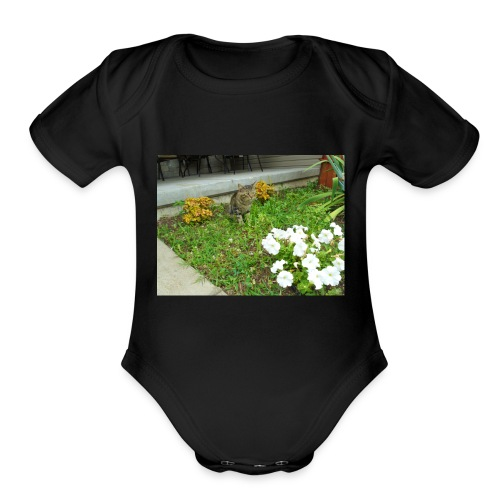 shirt1 - Organic Short Sleeve Baby Bodysuit