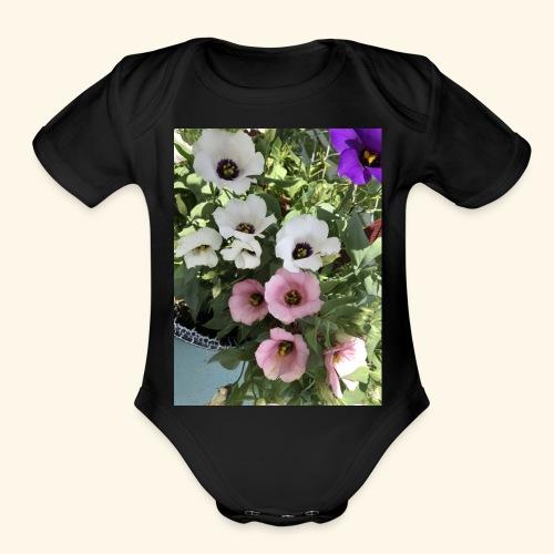 4FA23FC3 484D 4B1F A8CC 411196E8AC3D - Organic Short Sleeve Baby Bodysuit