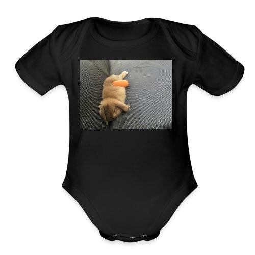 Rabbit T-Shirts - Organic Short Sleeve Baby Bodysuit