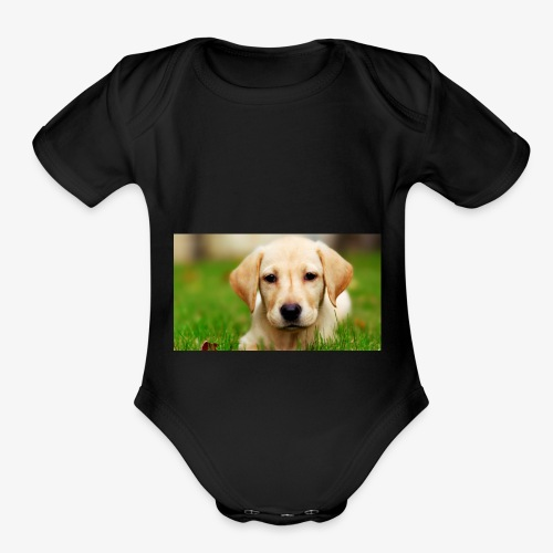 cute puppy - Organic Short Sleeve Baby Bodysuit
