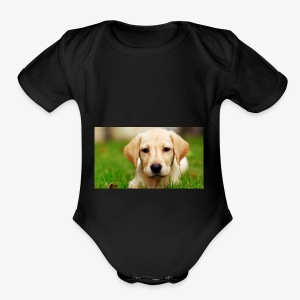 cute puppy - Short Sleeve Baby Bodysuit
