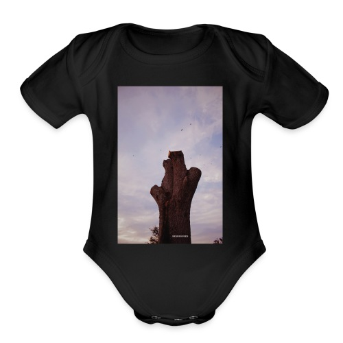 Brown Chirps - Organic Short Sleeve Baby Bodysuit