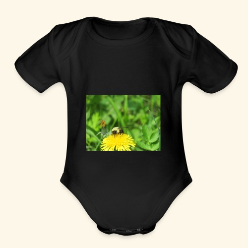 Dandelion Bee - Organic Short Sleeve Baby Bodysuit