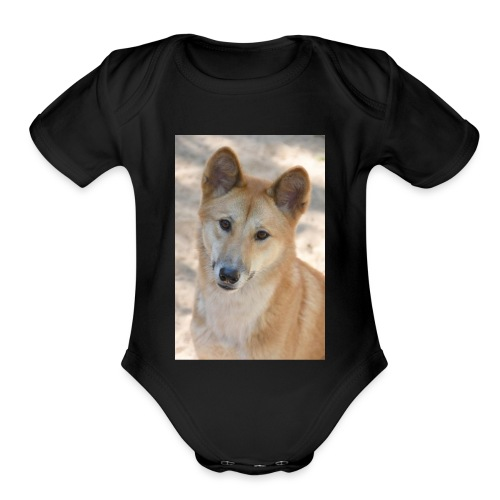 My youtube page - Organic Short Sleeve Baby Bodysuit
