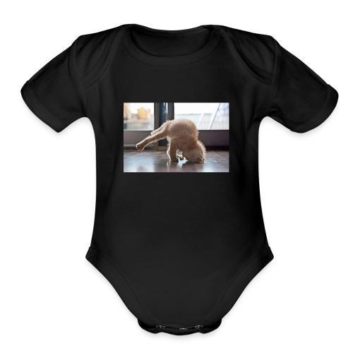 funny animals doing yoga - Organic Short Sleeve Baby Bodysuit