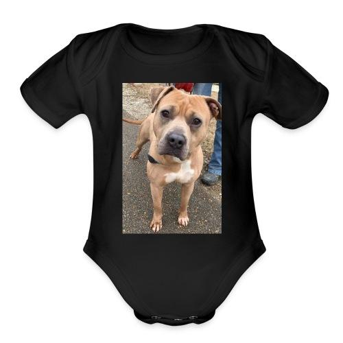 Brute Pup - Organic Short Sleeve Baby Bodysuit