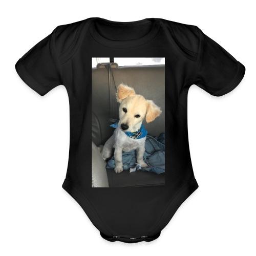 33C52F30 7C57 41AD B7E2 DC7368AD65AC - Organic Short Sleeve Baby Bodysuit