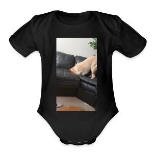 7F43606F 580A 46AF 8C1F 3961C9FD2E6C - Short Sleeve Baby Bodysuit