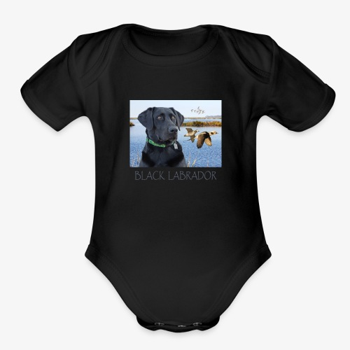 BLACK LABRADOR - Organic Short Sleeve Baby Bodysuit
