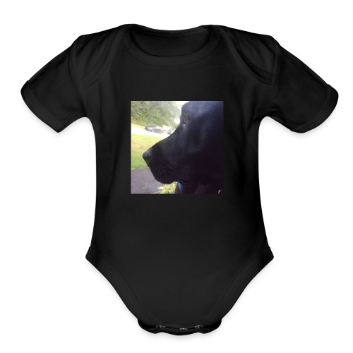Casey And The Window - Organic Short Sleeve Baby Bodysuit