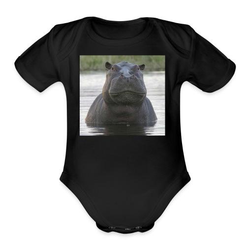 bertrand - Organic Short Sleeve Baby Bodysuit