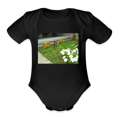 shirt1 - Organic Short Sleeve Baby Bodysuit