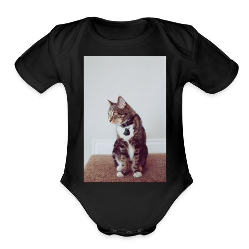 Cute Kitty - Organic Short Sleeve Baby Bodysuit