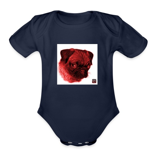 IMG_0027 - Organic Short Sleeve Baby Bodysuit