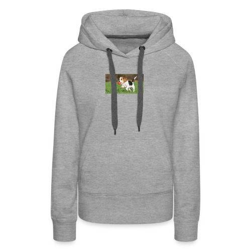 23695 pets vertical store dogs small tile 8 CB312 - Women's Premium Hoodie