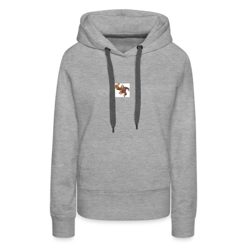 louiz fly out - Women's Premium Hoodie