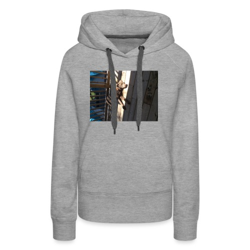 Finn on Deck - Women's Premium Hoodie