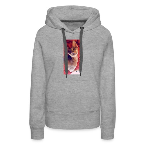 Being a Sphynx - Women's Premium Hoodie