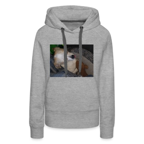KYLO The Truck dog - Women's Premium Hoodie