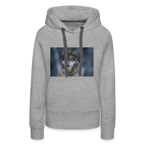 MinecraftWarriorGirl Merch - Women's Premium Hoodie