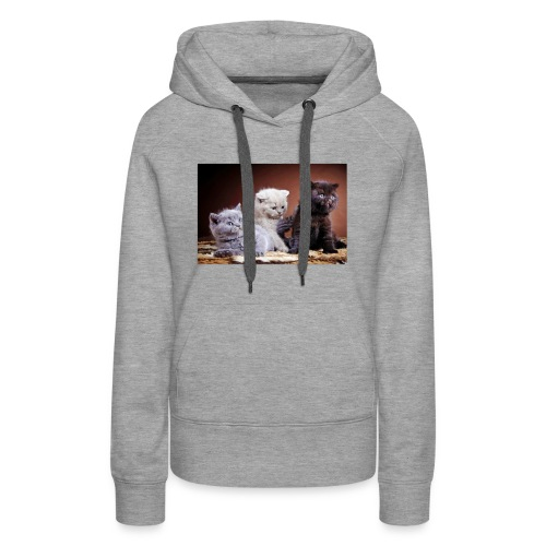 The 3 little kittens - Women's Premium Hoodie