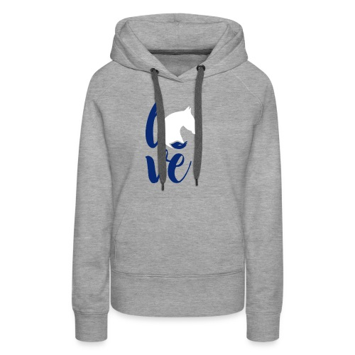 love logo sbf dblue white - Women's Premium Hoodie