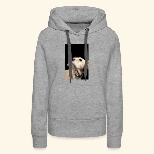 A dog with a bright future - Women's Premium Hoodie