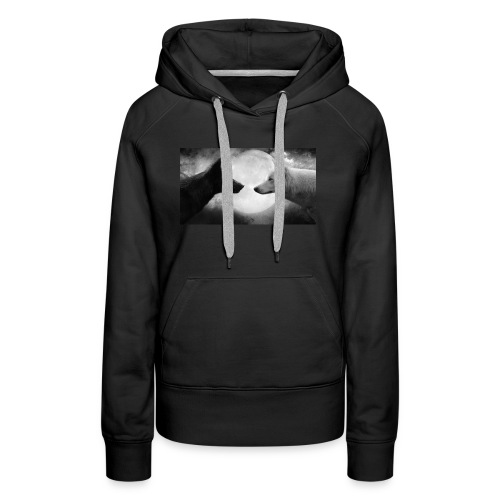 how we came together - Women's Premium Hoodie