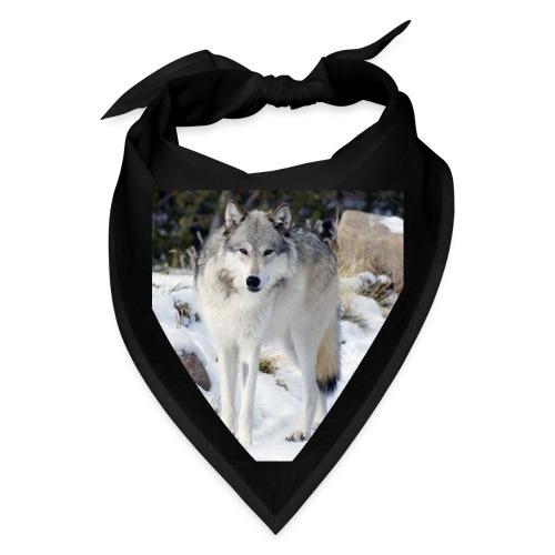 Canis lupus occidentalis - Bandana