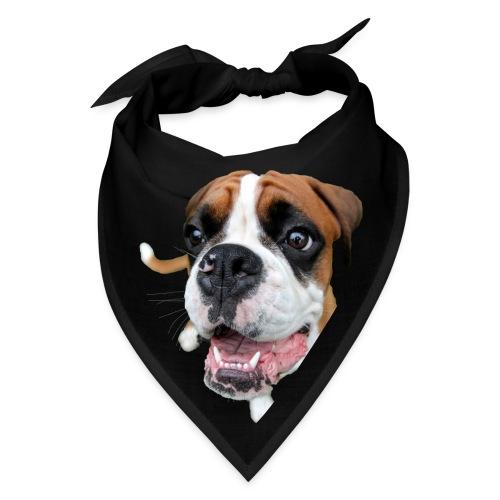 Boxer Rex the dog - Bandana