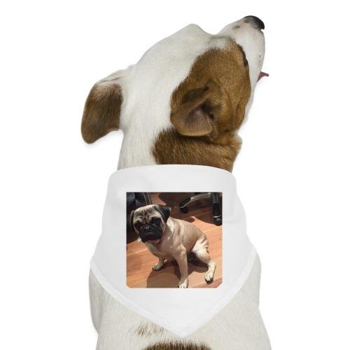 Gizmo Fat - Dog Bandana