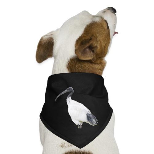 IBIS - Dog Bandana
