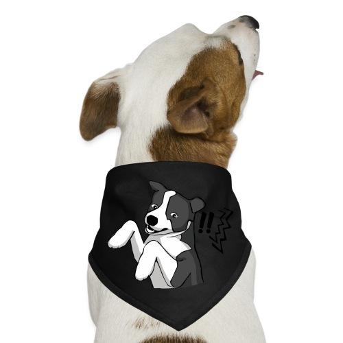 Surprised Border Collie - Dog Bandana