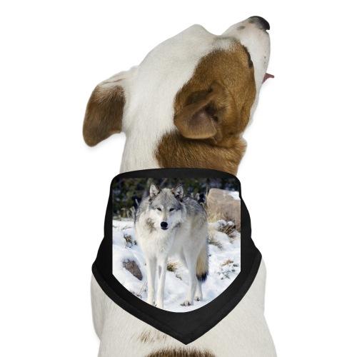 Canis lupus occidentalis - Dog Bandana