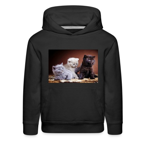 The 3 little kittens - Kids' Premium Hoodie