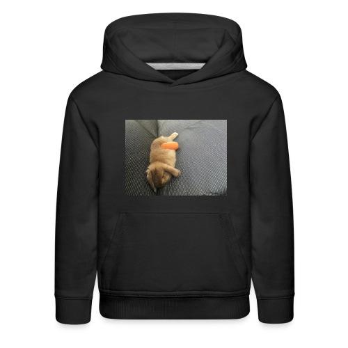 Rabbit T-Shirts - Kids' Premium Hoodie