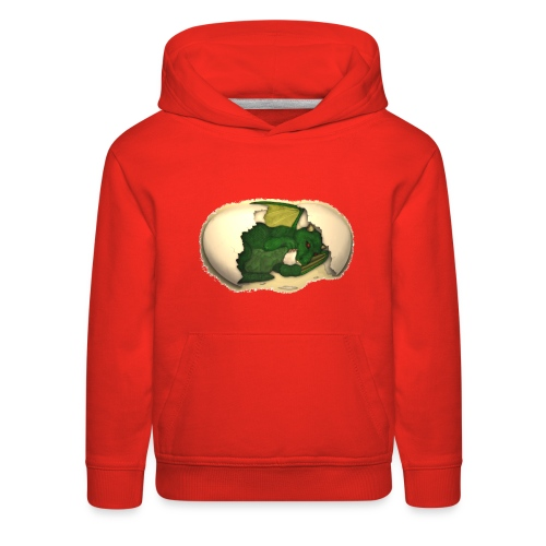The Emerald Dragon of Nital - Kids' Premium Hoodie