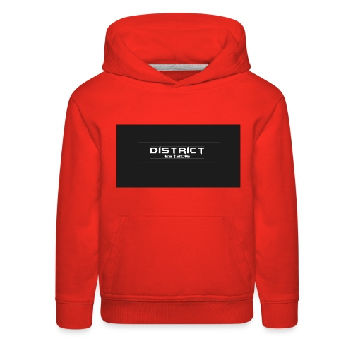 District apparel - Kids' Premium Hoodie
