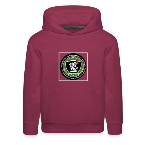 Its for a fundraiser - Kids' Premium Hoodie