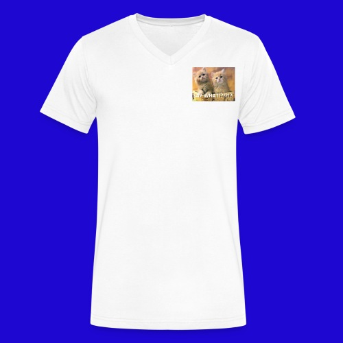 Cute Cats - Men's V-Neck T-Shirt by Canvas