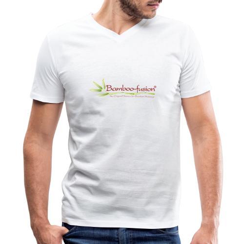 Bamboo-Fusion company - Men's V-Neck T-Shirt by Canvas
