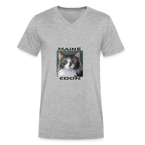 Maine Coon Cat - Men's V-Neck T-Shirt by Canvas