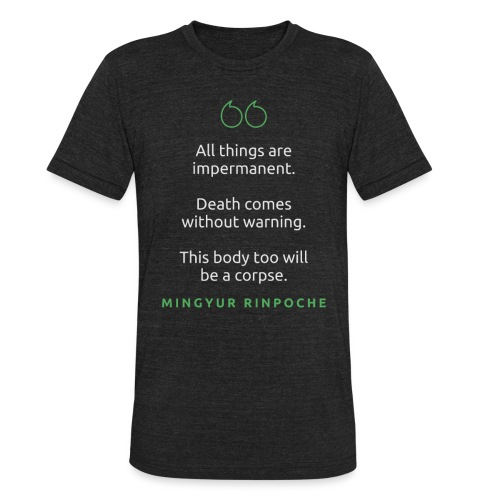 T Shirt Quote All things are impermanent Mingyu - Unisex Tri-Blend T-Shirt